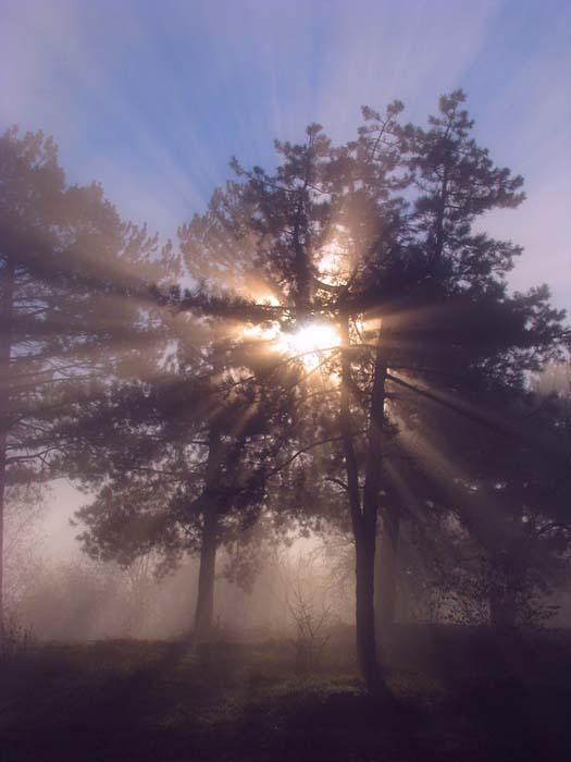 По лучам Солнца