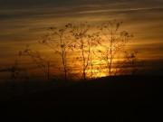 Мелодия крымского заката