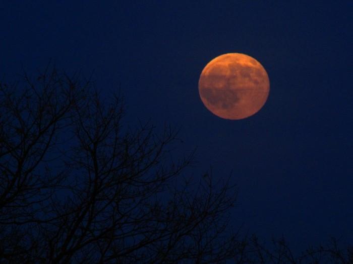 Краснощекая Луна
